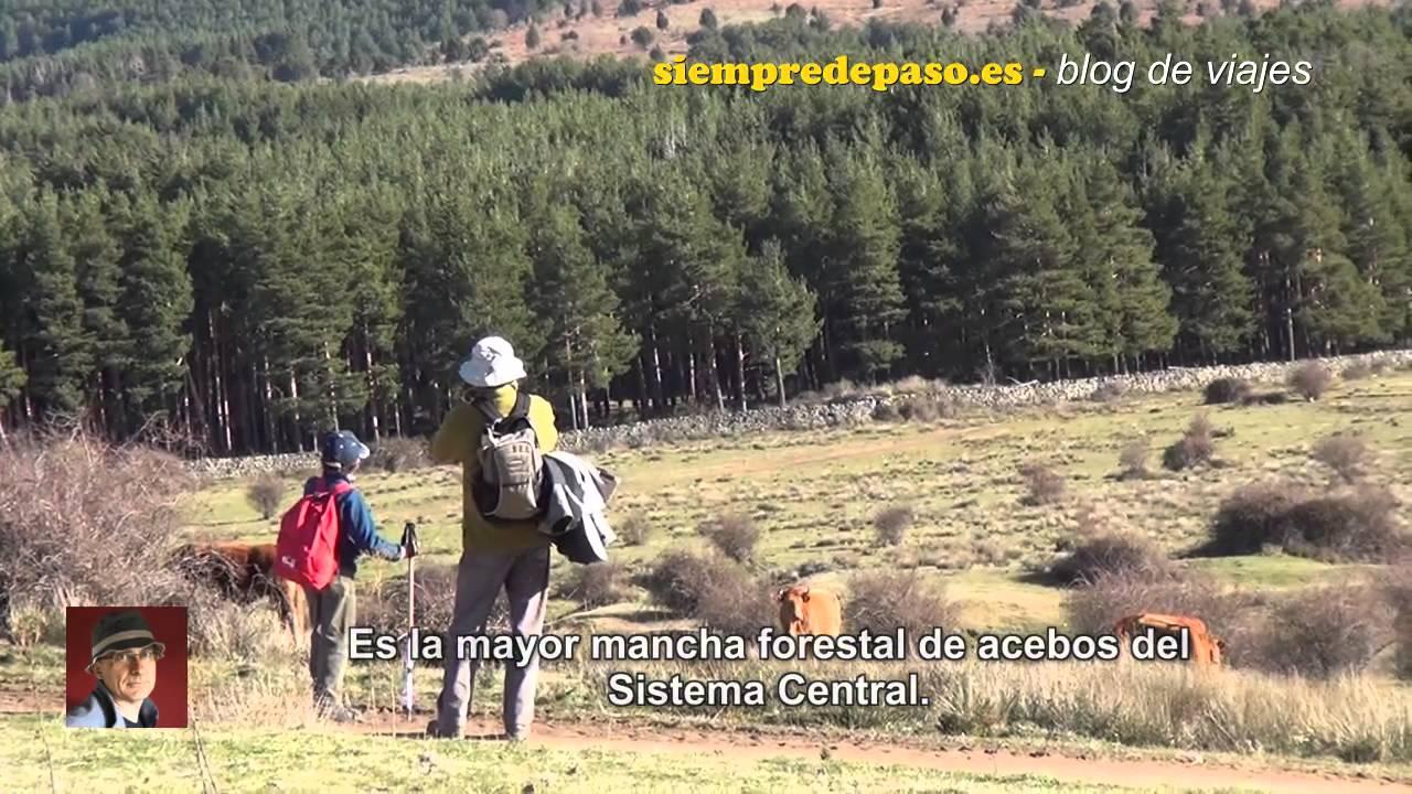 SENDA EL ACEBAL DE PRÁDENA - TESTIGOS DE OTRO TIEMPO