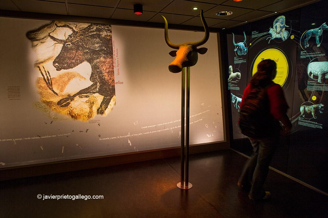 Museo del Toro. Valladolid. Castilla y León. España, 2008 © Javier Prieto Gallego