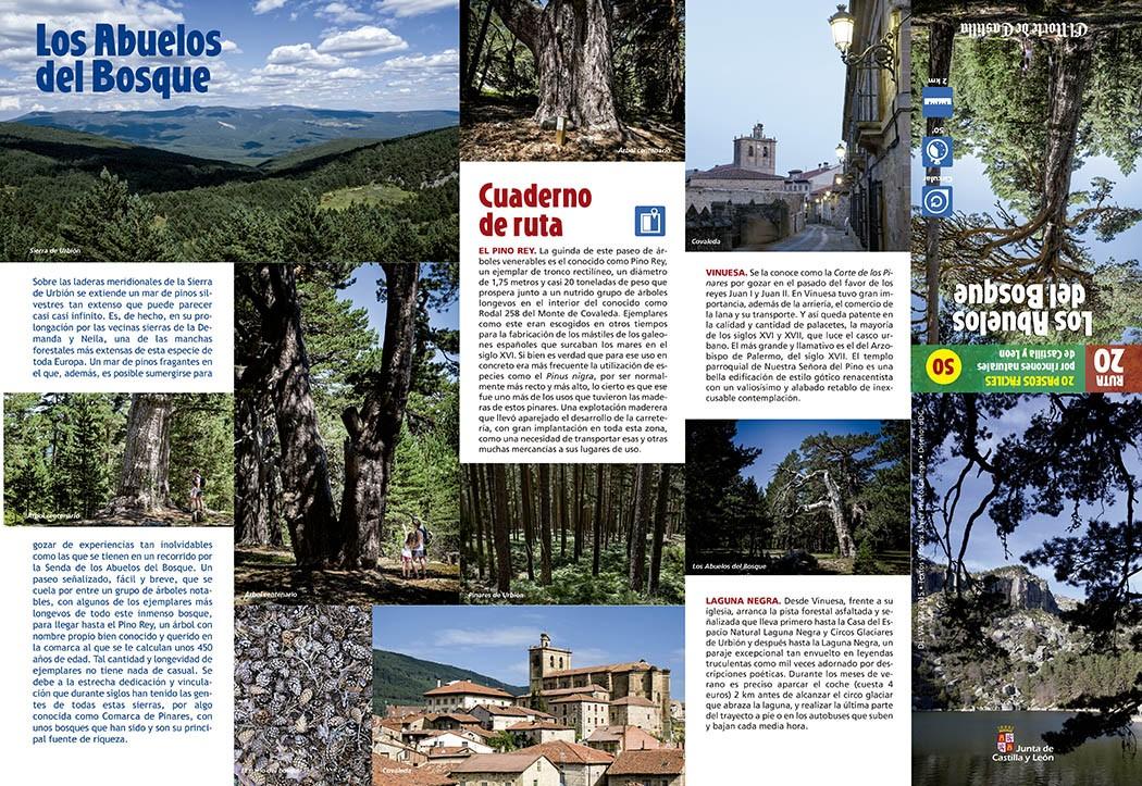 Colección de paseos por Castilla y León elaborada por Javier Prieto Gallego para el periódico EL NORTE DE CASTILLA