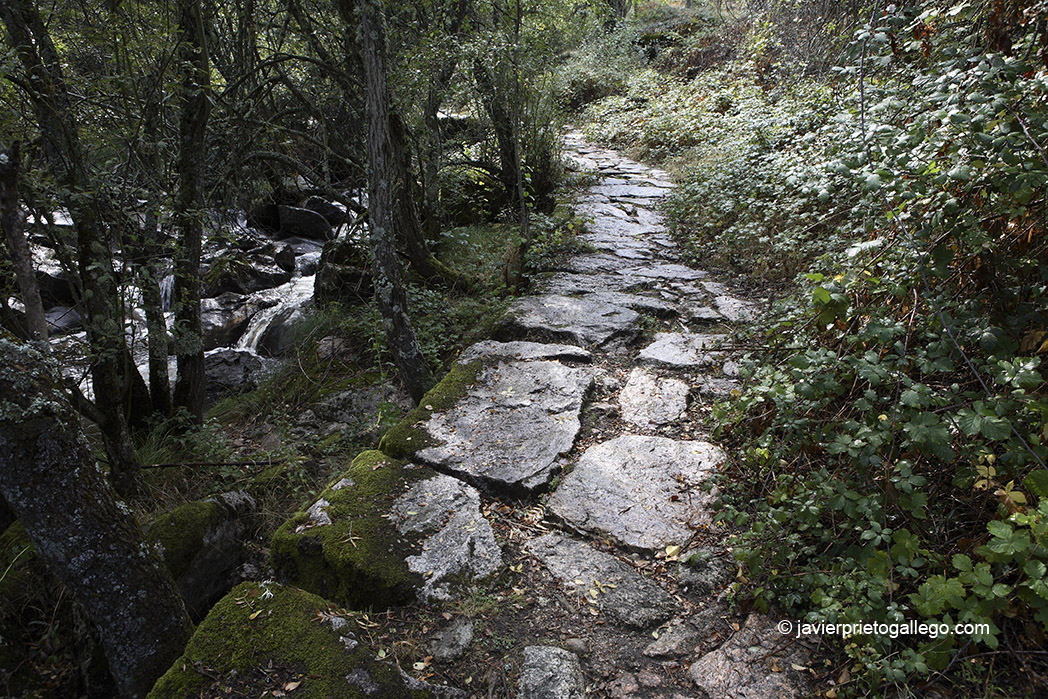 Río Valsaín. Losas de granito. Sendero de los Reales Sitios-Las Pesquerías Reales. La Granja-Valsaín. Segovia. España © Javier Prieto Gallego;