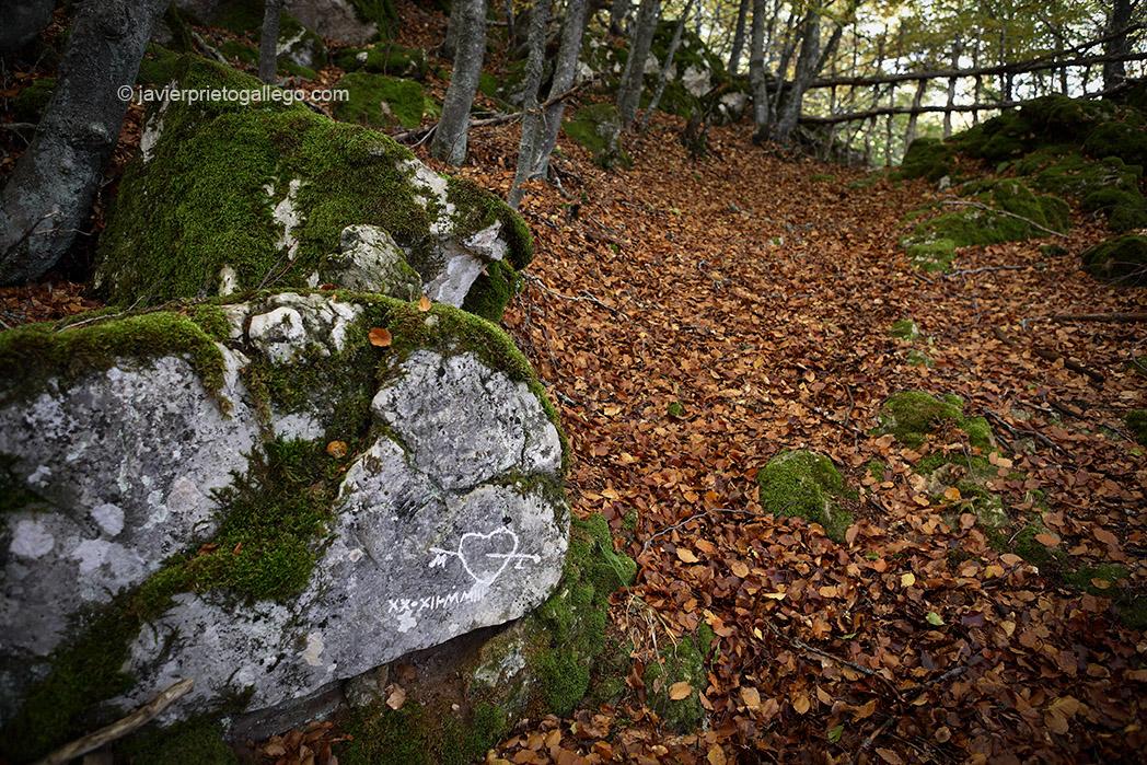 Grabado de un corazón en una roca del Hayedo de Valporquero. otoño. Vega del Torío. León. España. © Javier Prieto Gallego