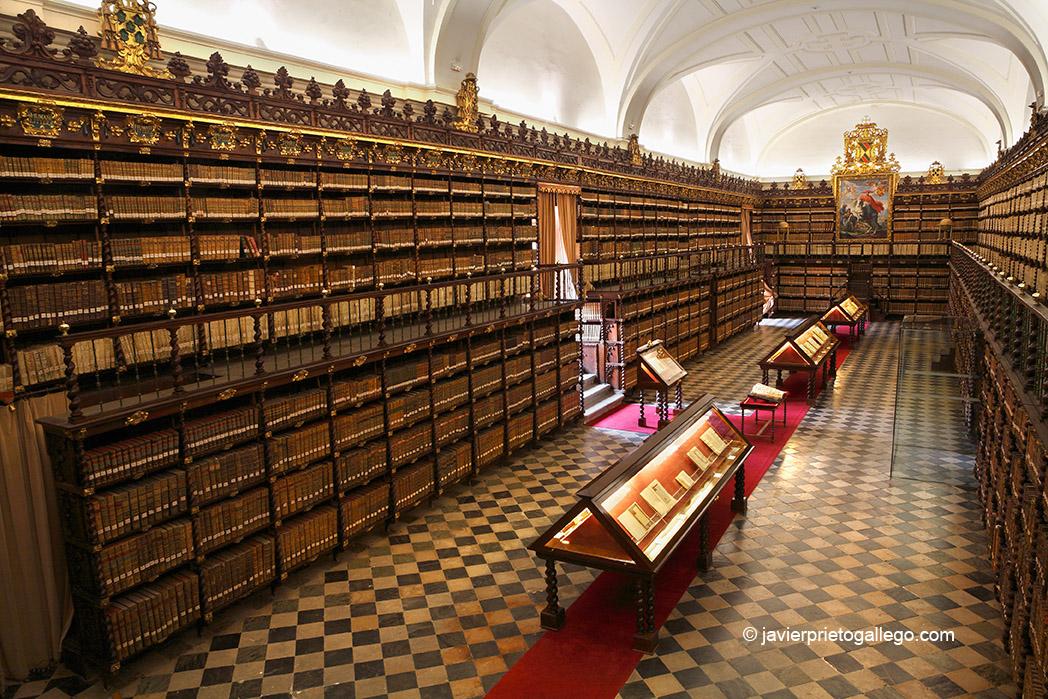 Biblioteca histórica. Palacio de Santa Cruz. Valladolid. Castilla y León. España © Javier Prieto Gallego