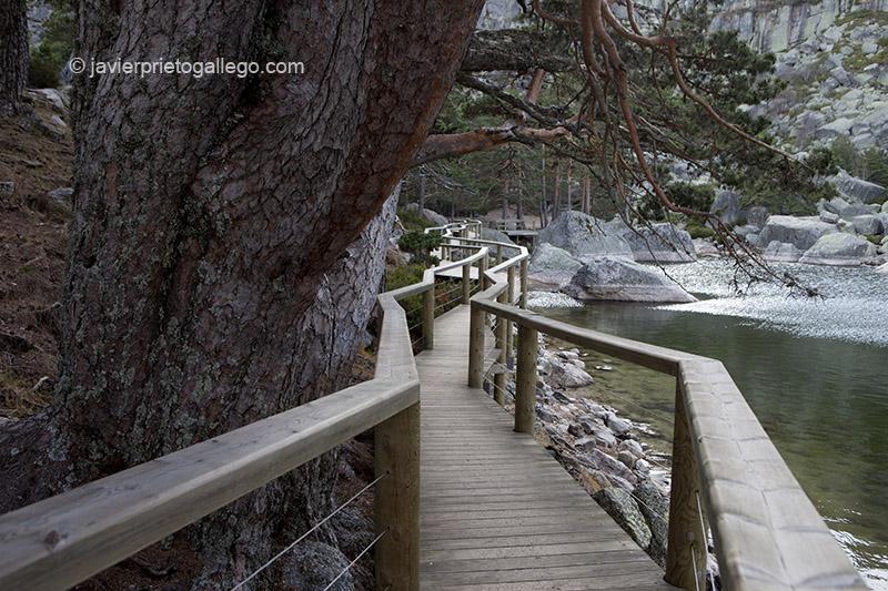 Pasarela de madera que recorre una de las orillas de Laguna Negra. Espacio Natural Laguna Negra y Circos Glaciares de Urbión. Soria. Castilla y León. España. © Javier Prieto Gallego