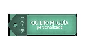 ticket guía viajera