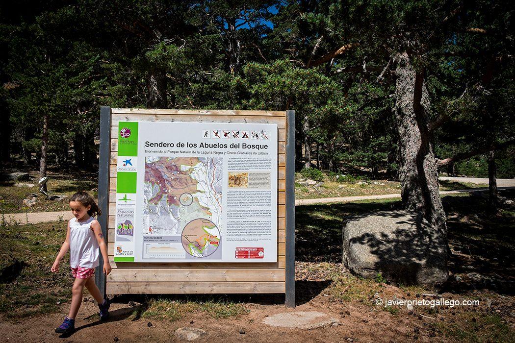 Inicio de la Senda de los Abuelos del Bosque. Parque Natural Laguna Negra y Circos Glaciares de Urbión. Sierra de Urbión. Soria. Castilla y León. España. © Javier Prieto Gallego;