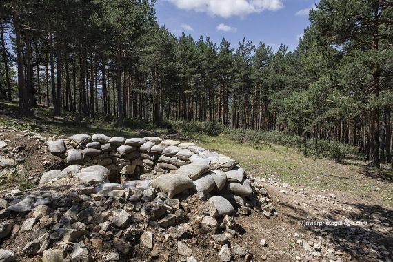 Pozo de tirador con sacos terreros en el Sendero autoguiado Paisaje de Guerra. Montes de Valsaín. Segovia. Castilla y León. España. © Javier Prieto Gallego
