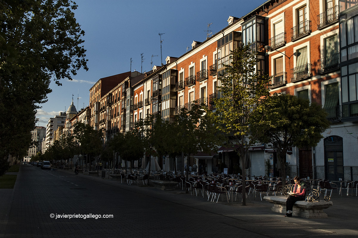Una mujer lee sentada en un banco de la Acera de Recoletos. Valladolid. Castilla y León. España. © Javier Prieto Gallego