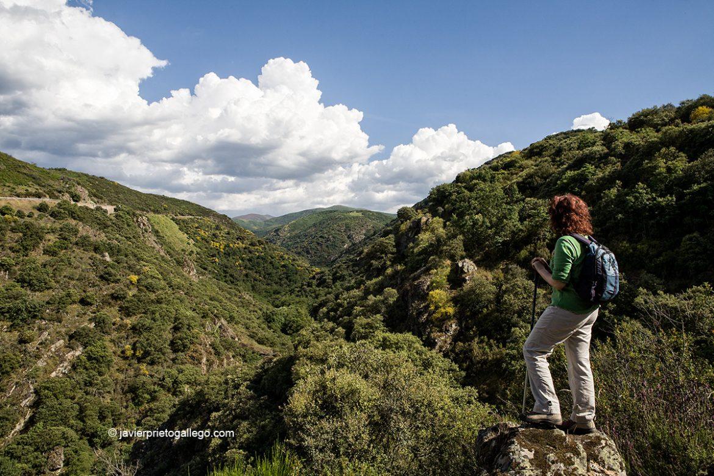 Sendero hacia Las Puentes de Malpaso por el barranco del río Meruelo. Molinaseca. León. Castilla y León. España. © Javier Prieto Gallego
