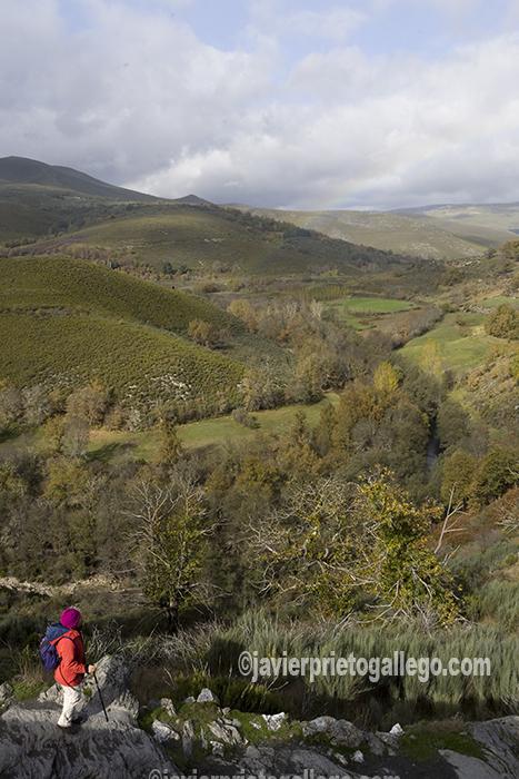 Valle del río Tuela, en la Ruta de los castaños de la localidad de Hermisende. Sanabria. Zamora. Castilla y León. España. © Javier Prieto Gallego