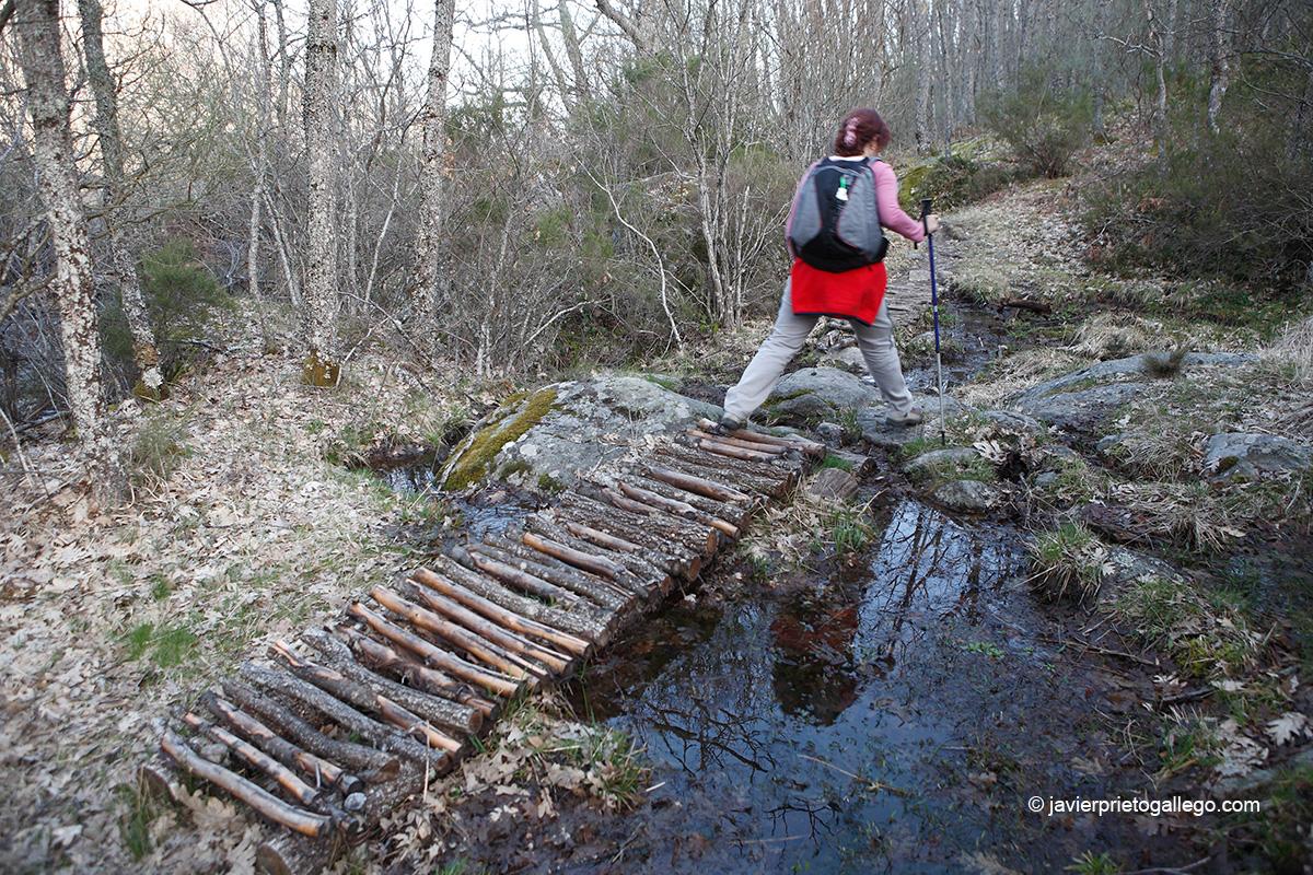 Un pequeño puente de troncos facilita el paso en el camino de las cascadas de Sotillo. Sotillo de Sanabria. Parque Natural Lago de Sanabria y alrededores. Zamora. Castilla y León. España © Javier Prieto Gallego