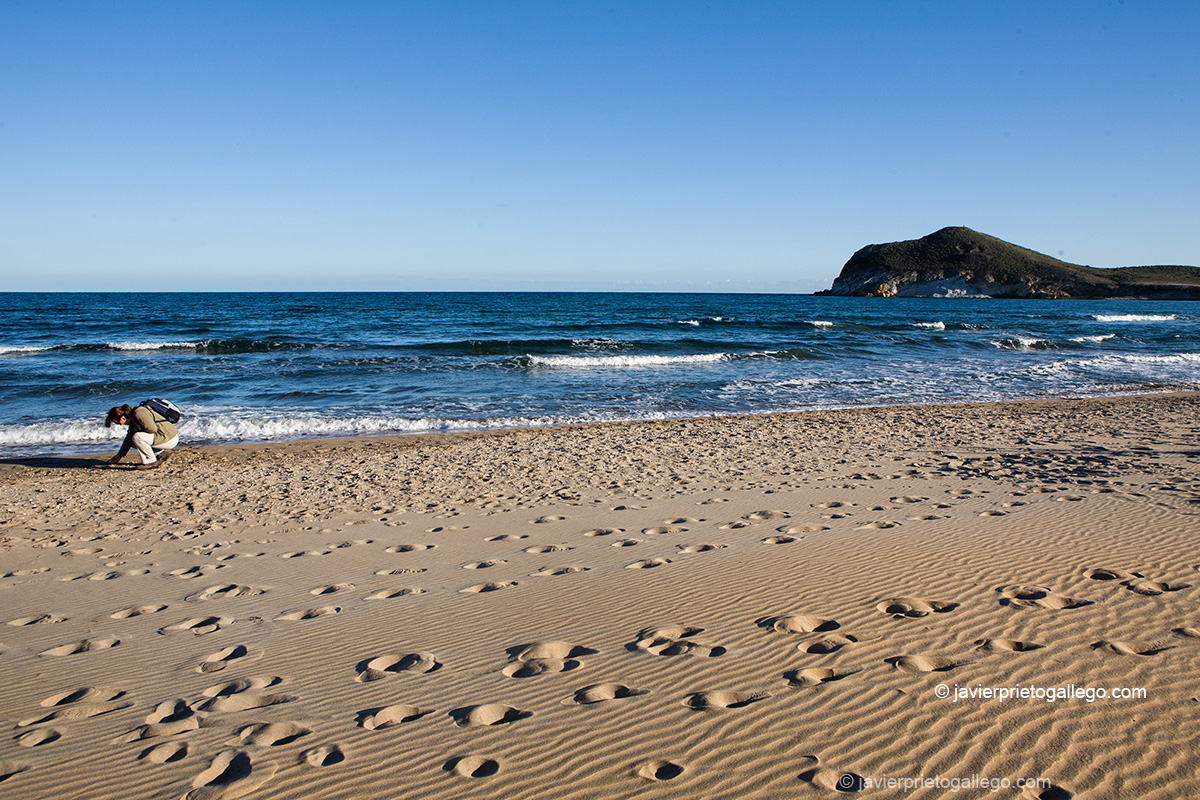 Huellas en la arena. Playa de Los Genoveses. Chumberas. Cabo de Gata. Almería. Andalucía. España.© Javier Prieto Gallego