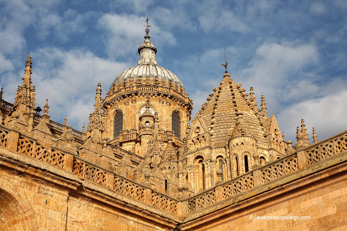 Cúpula y torre del Gallo de la catedral de Salamanca. Salamanca capital. Castilla y León. España. © Javier Prieto Gallego