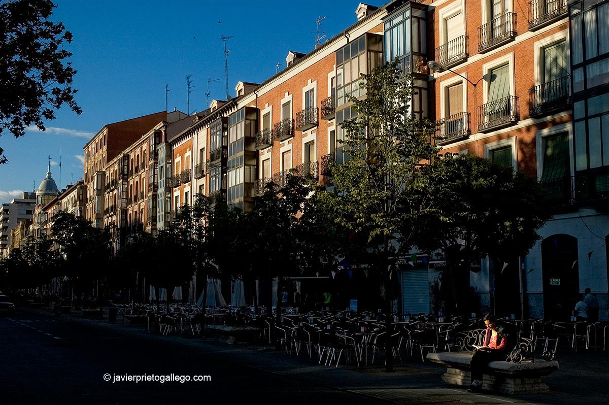 Una mujer lee en un banco de la Acera de Recoletos. Edificios del siglo XIX. Valladolid. Castilla y León. España. © Javier Prieto Gallego