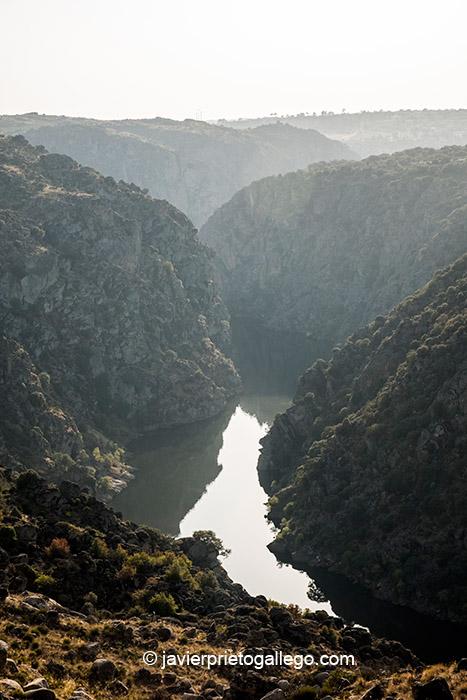 Vista del Duero desde el Castro de Peña Redonda o San Mamede. Villardiegua de la Ribera. Parque Natural Arribes del Duero. Zamora. Castilla y León. España © Javier Prieto Gallego